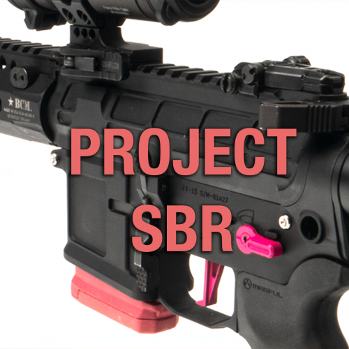 Build of the Week: Project SBR